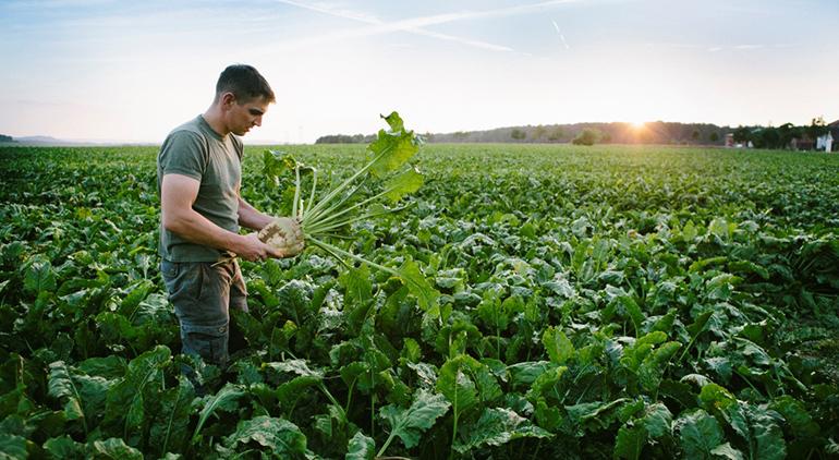 La COVID-19 aumenta el interés de los consumidores por el bienestar y los productos ecológicos