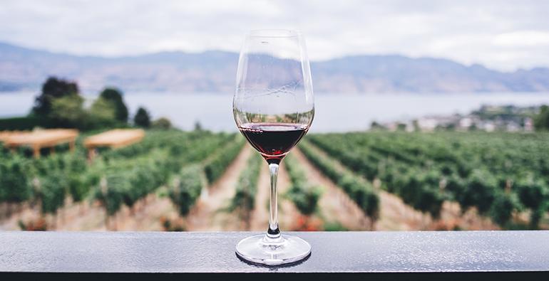 Vino y Salud, California, vinícola, enología