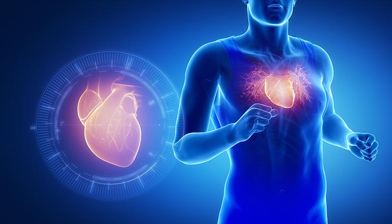 Vitamina K2 MK-7, ingrediente funcional para la salud cardiovascular y ósea