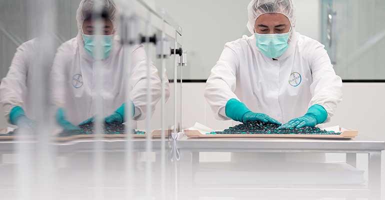 Bayer dona más de 67.000 suplementos vitamínicos