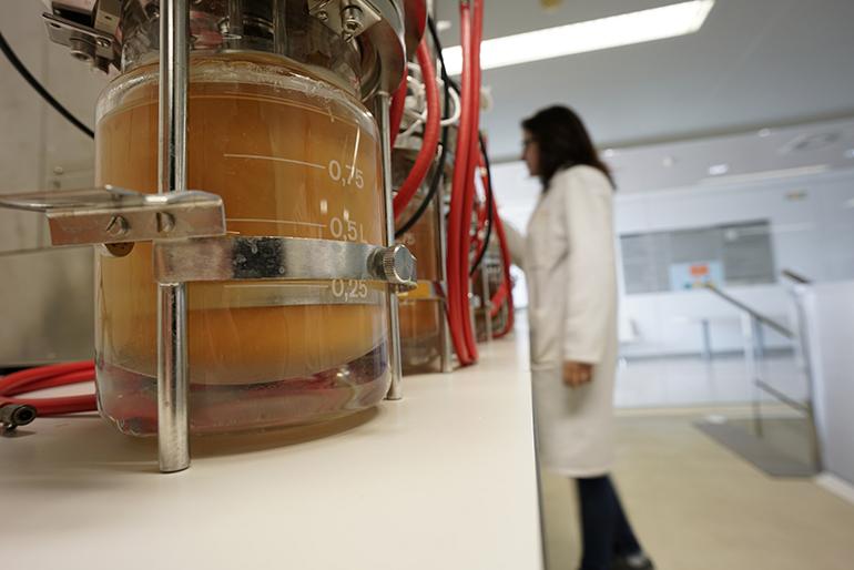 La jornada Proteínas 2030 muestra productos vegetales y sostenibles de cara al futuro