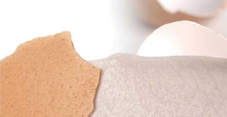 Membrana de cáscara de huevo soluble: potente antiinflamatorio