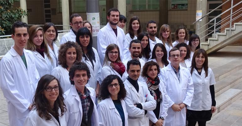 Investigadores españoles y de la Univ. de Harvard confirman que el consumo de nueces reduce el colesterol